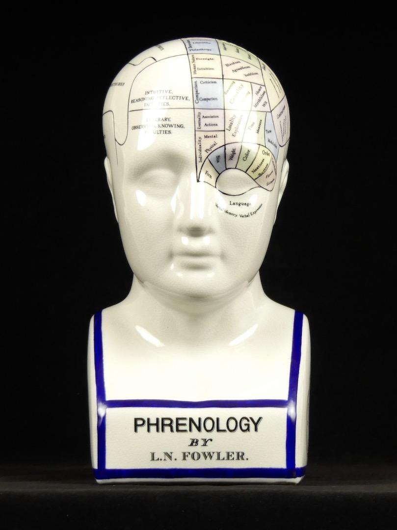 Buste et tête de phrénologie