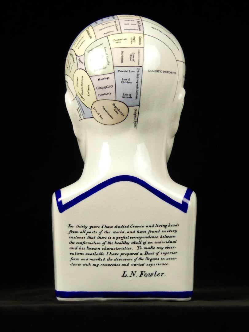 Buste et tête de phrénologie (dos)